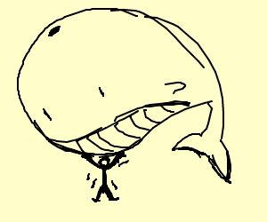 Man holding big acuatic mammal