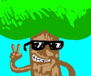 Tree man with sweet shades.