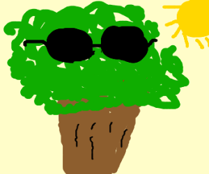 A tree wearing sunglasses