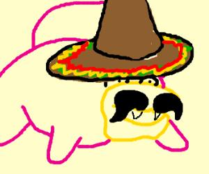 Slowpoke Rodriguez