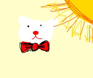 hello kitty sunbathes