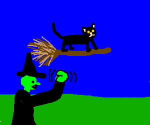 Cat hijacks witches' broom