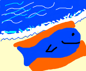 Whale chilling on the beach
