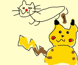 Cat craps on Pikachu