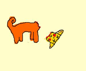 Dismebodied cat head * pickachu head