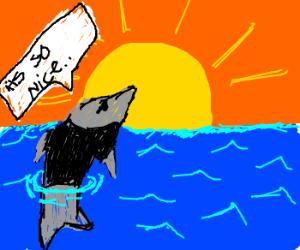 Depressed Dolphin Looks At Sun