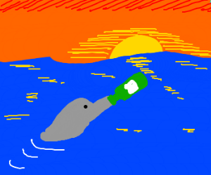 bottle nose dolphin follows the sunset