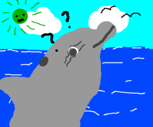 Dolphin jumpin under green sun, confused