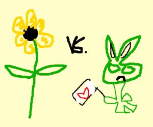 Sunflower VS reluctant green imp