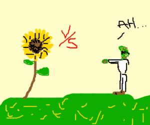 Sunflower Vs. Zombie Professor