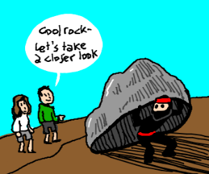 There they saw a rock - it wasnt a rock!