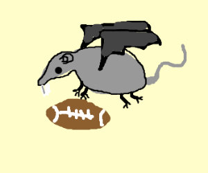 rat with wings grabs football