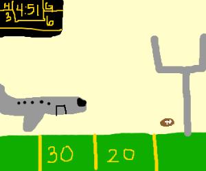 Airplane on football field runway