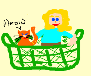 cat and person in basket