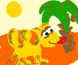 camel licking a palm