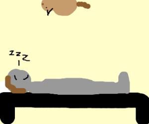 ceiling cat watches man sleep