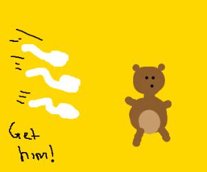 Sperm atacks the teddy bear