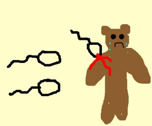 Rogue sperm attack unspecting bear