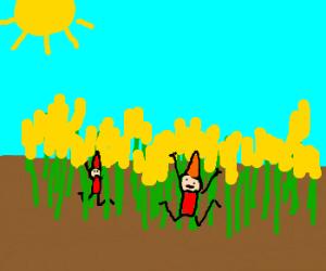 Elfs jumps around in corn field
