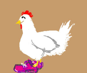 Happy chicken wearing shoes