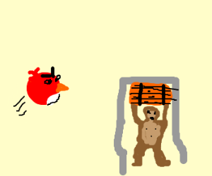 angry birds beat down on donkey kong