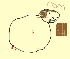 a sad truth: chocolate makes you fat. :(