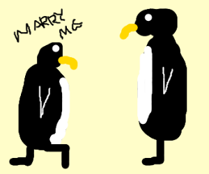 """The proposal"" Soon on ABC'sPenguineIsle"