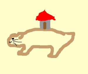 Little House on the Prairie Dog