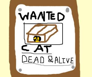 Schrödingers cat wanted dead or alive.