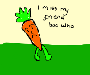 Lonely carrot grieves for grated friend