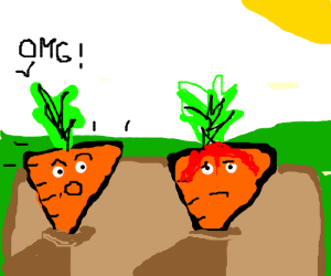 carrot shocked friend carrot is bleeding