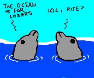 Hypocritical Dolphins.
