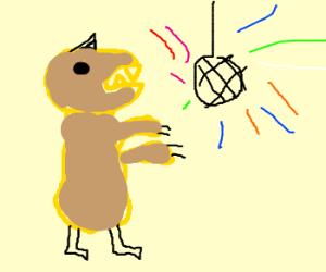 Velociraptor disco