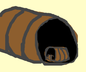 barrelception