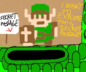 Link wants to explore secret passage