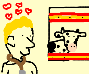 The Doctor in love with a Spanish cow