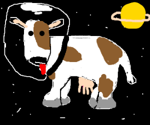 A space cow.