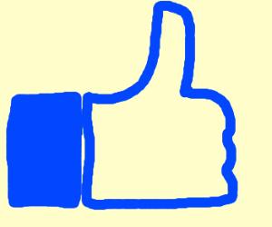 Facebook Like button.