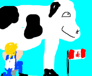 Canadian cow is happy to be milked