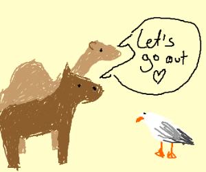 Horse and Camel try to date a Seagull
