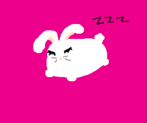 Cute sleeping wittle bunny
