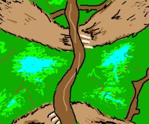 Sloth Vision