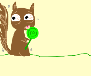 terrified squirrel licks green lollipop