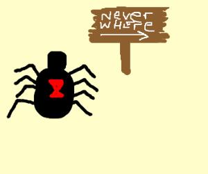 Black widow on her way to neverwhere
