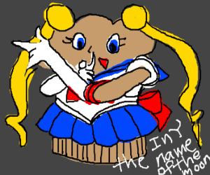 Sailor Muffin fights for love & justice!