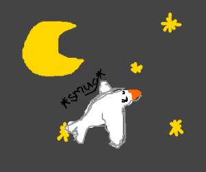 Snobby white bird flies at night.