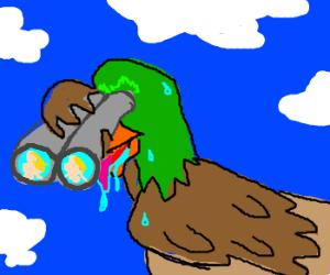 Voyeur Duck...likes to watch...