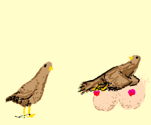 Two birds(one lying on a pair of tits).