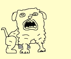 Herp the derp dog