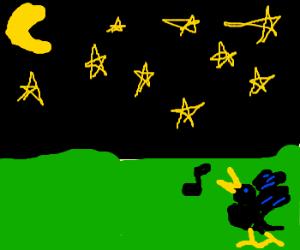 Blackbird sing in the dead of night